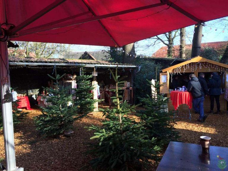 Impressionen_Weihnachtsbaumverkauf__49