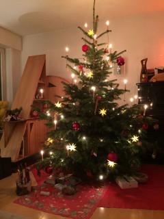 2016_Weihnachtsbaeume__17