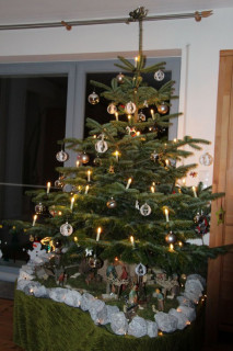 2016_Weihnachtsbaeume__20_800x800-equal